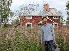 Skandinavische Gärten