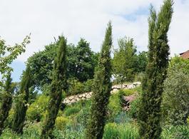 Gartenreise Exotengarten
